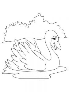 Swan Coloring Pages Free