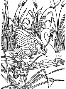Swan With Crown Coloring Page