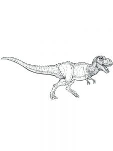 T Rex Fighting Coloring Pages