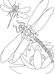 Toddler Insects Coloring Page