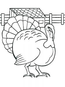 Turkey Coloring Pages Color By Number