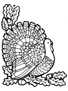 Turkey Coloring Pages For Preschoolers