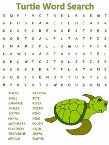 Turtle Word Search for Kids