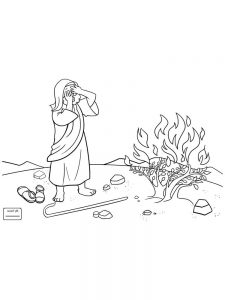 What Happened With Moses And The Burning Bush