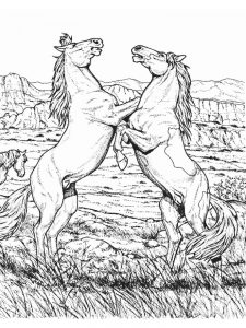 Wild Horse Coloring Pages To Print