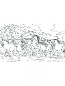 Wild Horse Colouring Pictures