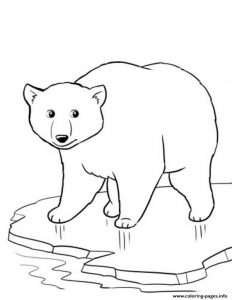 Winter Polar Bear Coloring Pages Printable