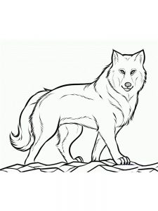 Wolves Coloring Page
