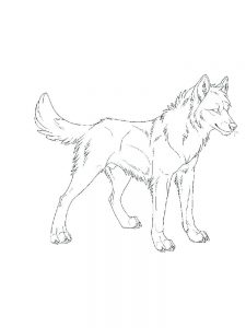 Wolves Coloring Pages Printable