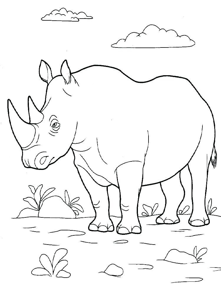 Woolly Rhino Coloring Pages