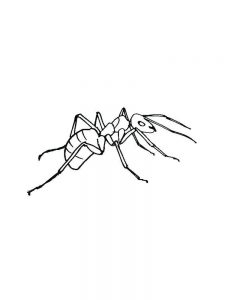 ant coloring pages for preschooler