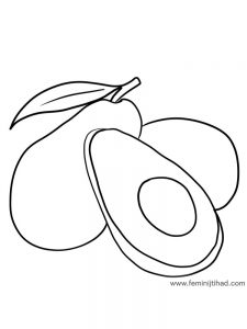 avocado coloring page pdf