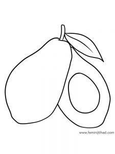 avocado coloring page print