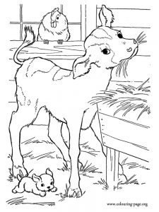 barn coloring book pages
