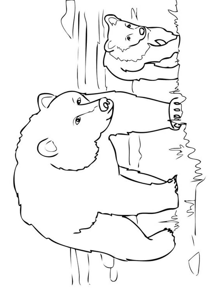 bear and cub coloring pages
