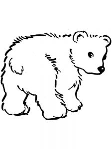 bear colouring in pages