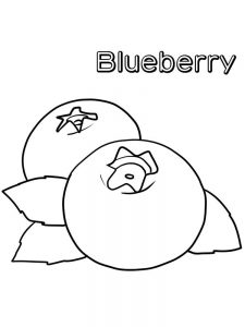 blueberry coloring page free