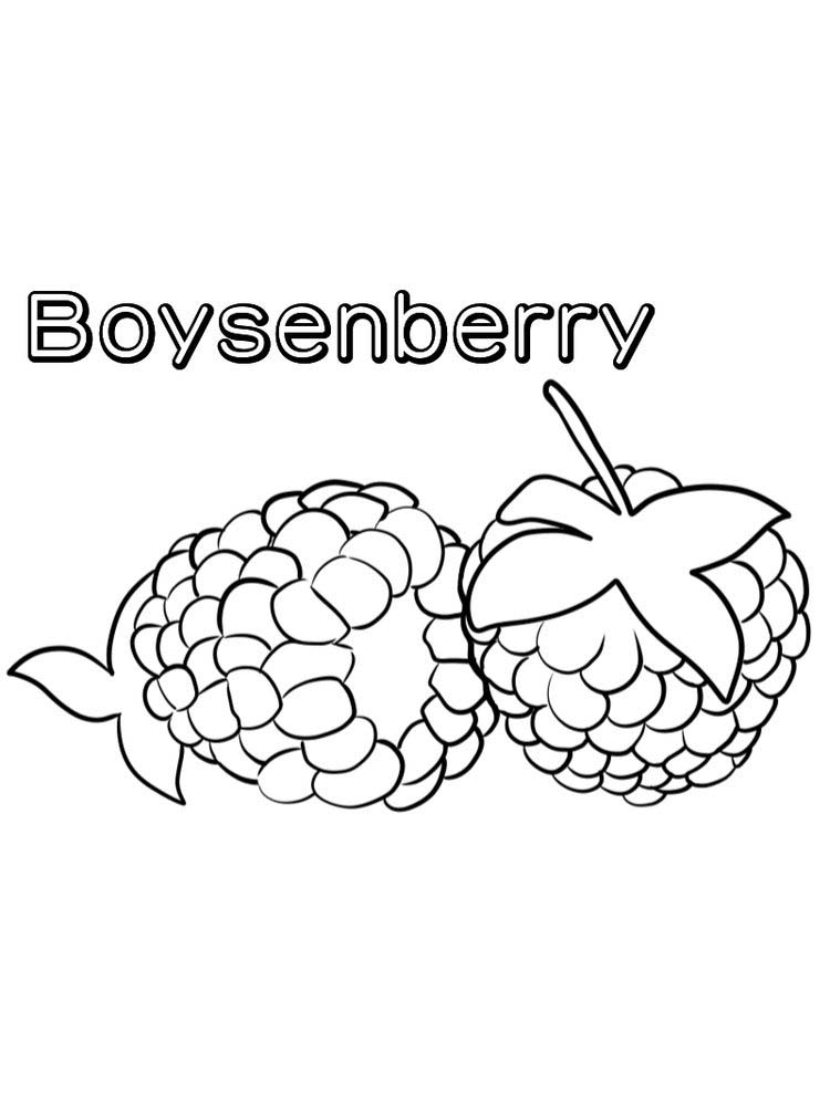 boysenberry coloring image free