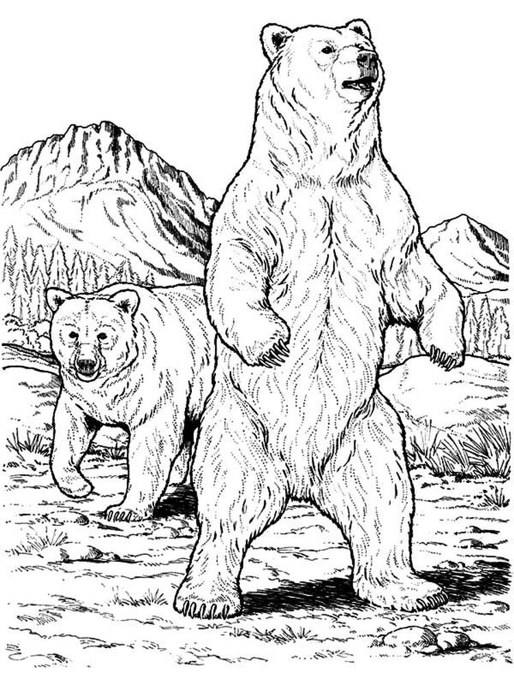 brother bear coloring pages