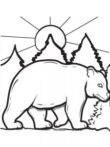 brown bear coloring pages free