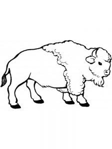 buffalo coloring pages free