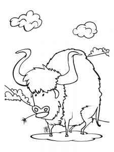 buffalo coloring pages oke