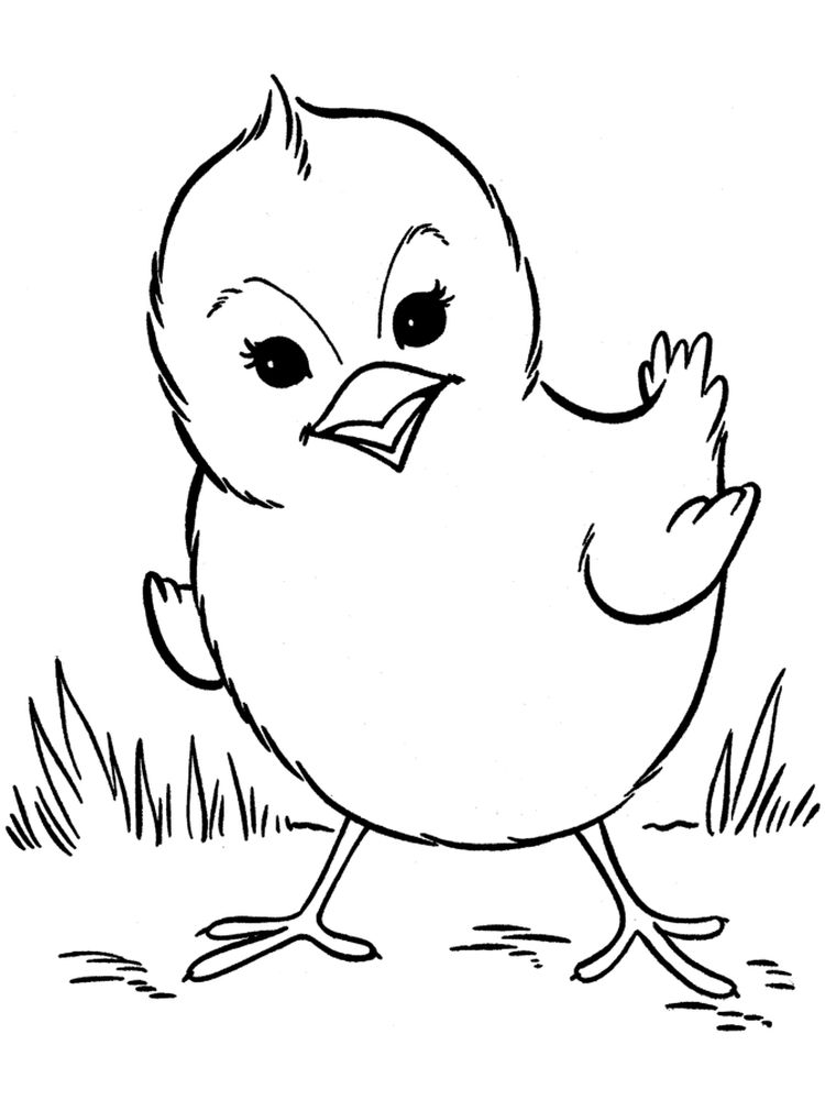 chick coloring pages printable