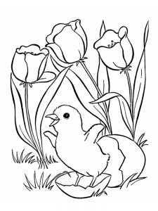 chick in egg coloring pages free