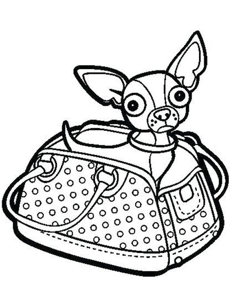 chihuahua coloring pages to pdf
