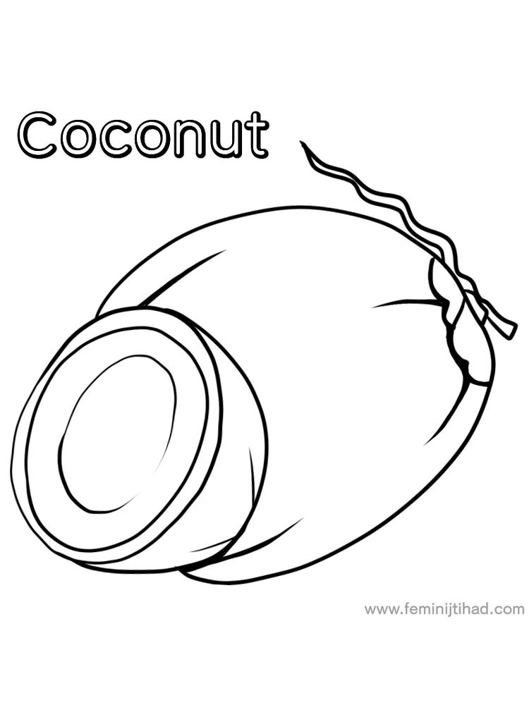 coconut coloring image free