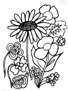 coloring page of a plant
