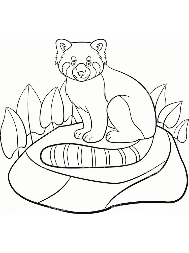 coloring pages animals free