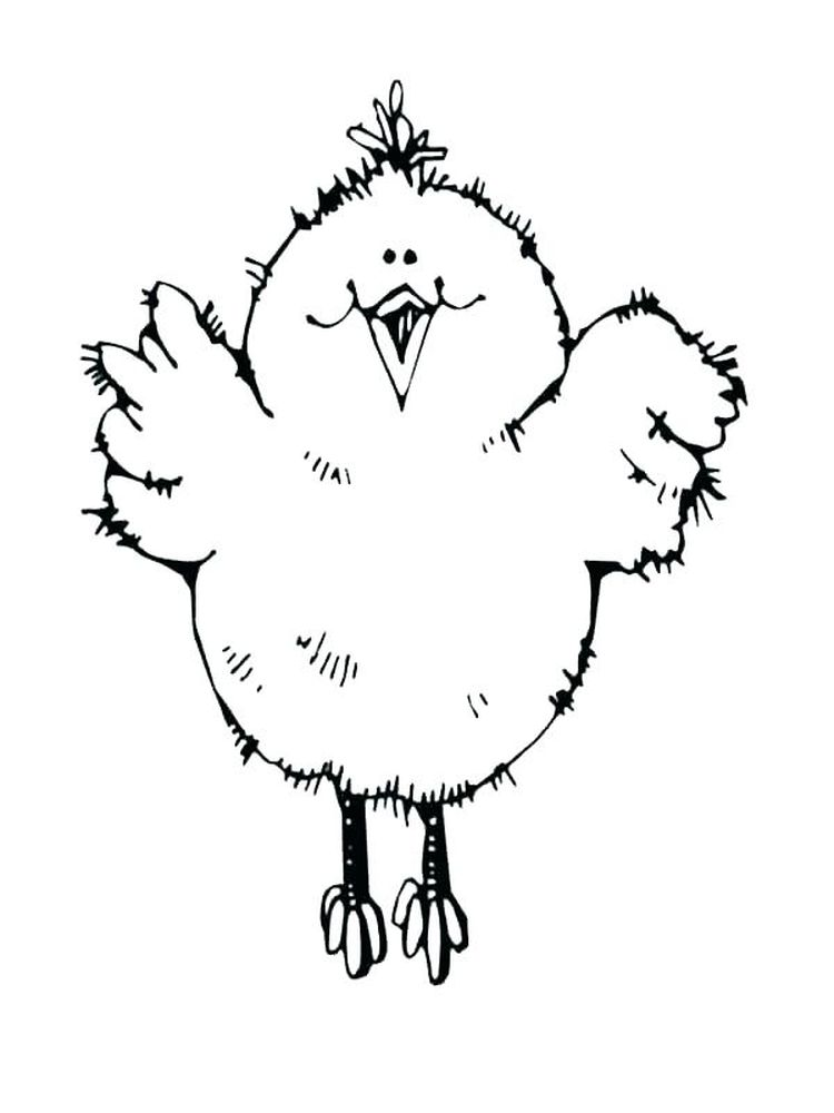coloring pages chick free