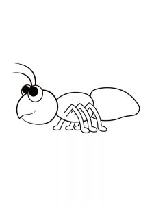 coloring pages of ant