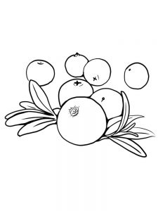 coloring pages of cranberries free