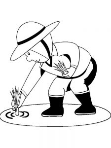 corn plant coloring page