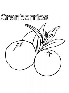 cranberries coloring page print