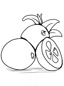 cranberries coloring pages print