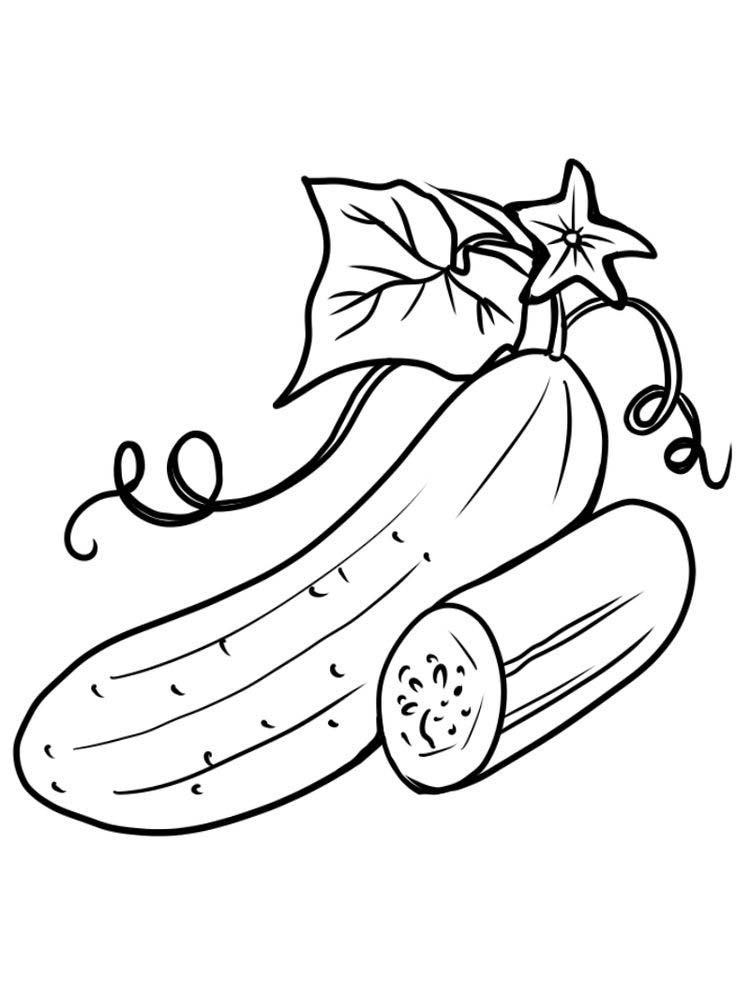 cucumber with leaf coloring pages free