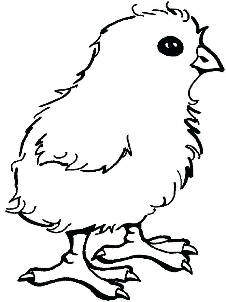 cute baby chick coloring pages free
