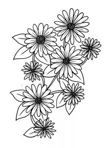 daisy flower printable coloring pages