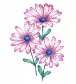 Free Printable Daisy Coloring Pages