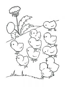 easter chick coloring pages free