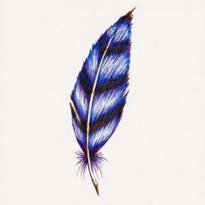 Feather Coloring Pages Printable