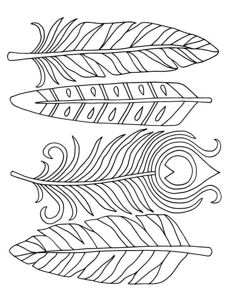 feather coloring page zentangle