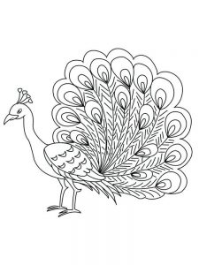 feather coloring pages free
