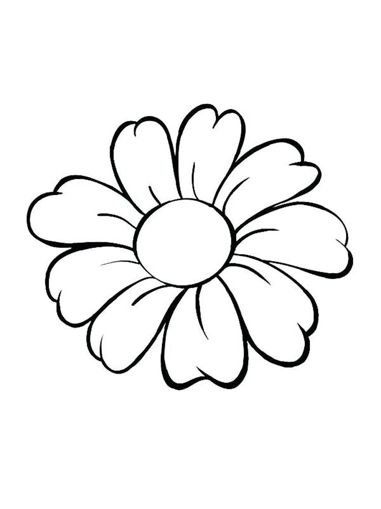 flower coloring pages for adults free