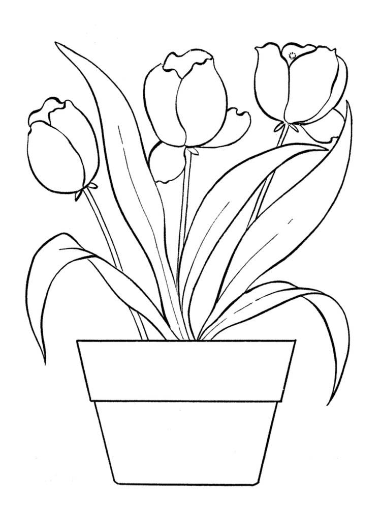flower coloring pages for adults online