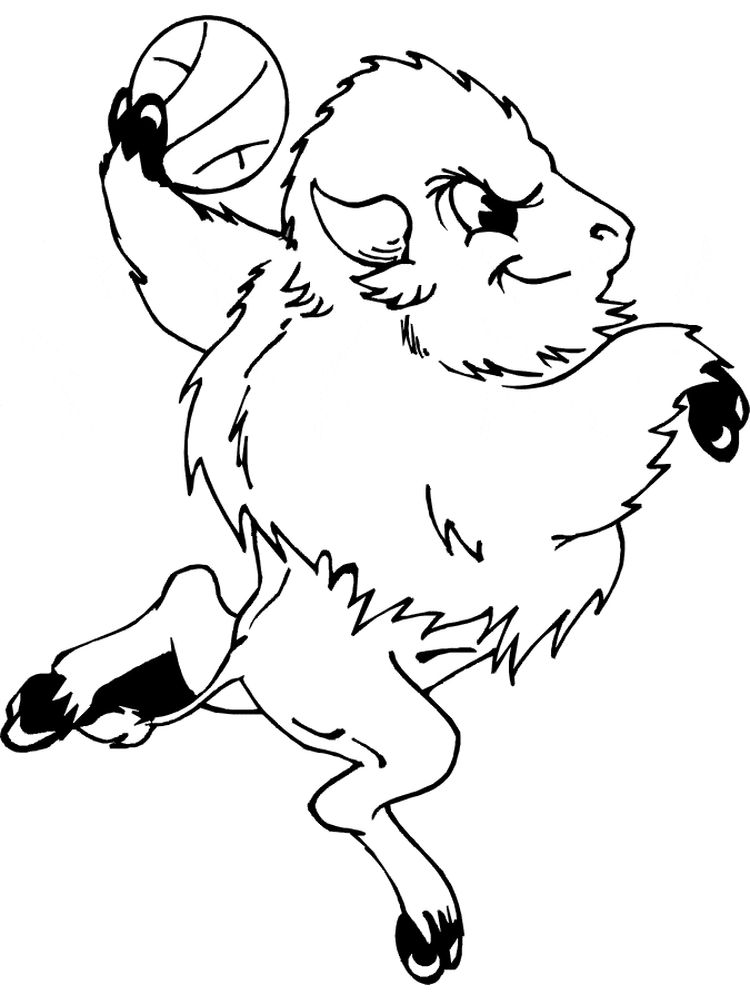 free buffalo coloring pages free