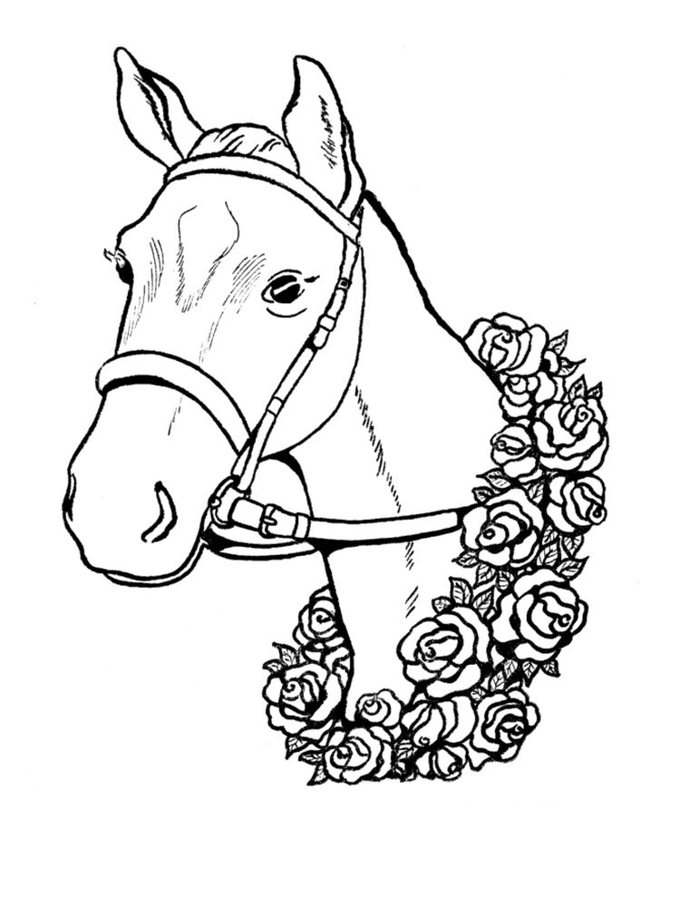 free coloring pages animals 036